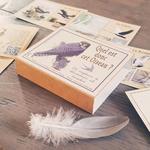 cartes marc vidal oiseaux