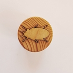 tampon pâte à modeler insecte