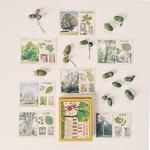 cartes vintage arbre marc vidal