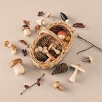 champignons en bois