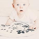 tapis lapin noir et blanc