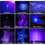 Lampe-de-poche-UV-noire-d-tecteur-d-urine-d-animaux-clairage-noir-100-LED