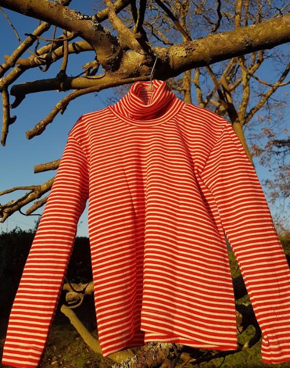 Cosilana T-shirt col roulé manches longues rouge rayé - laine/soie