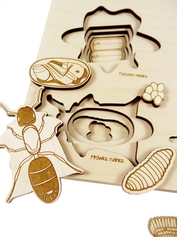 Puzzle multicouches le Cycle de vie des insectes Stuka Puka