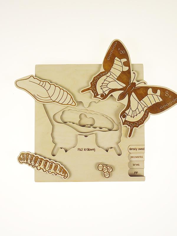 Puzzle multicouches le Cycle de vie du papillon Stuka Puka