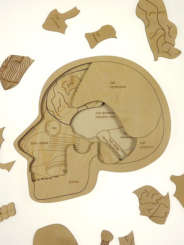 Puzzle Stuka Puka L\'anatomie du crâne