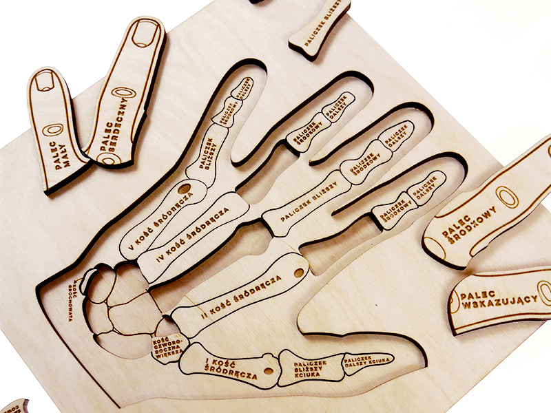 Puzzle Stuka Puka L\'anatomie de la main