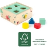 10944-cube-a-formes-move-it-small-foot-2