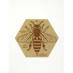 Puzzle en bois Anatomie de l'abeille Stuka Puka 5