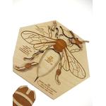 Puzzle en bois Anatomie de labeille Stuka Puka 4