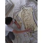 Puzzle géant Anatomie de notre corps Stuka Puka 5