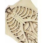 Puzzle géant Anatomie de notre corps Stuka Puka 6