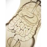 Puzzle géant Anatomie de notre corps Stuka Puka 7