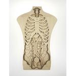 Puzzle géant Anatomie de notre corps Stuka Puka