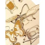 Puzzle multicouches le Cycle de vie des insectes Stuka Puka 4