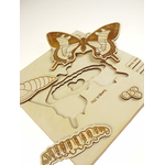 Puzzle multicouches le Cycle de vie du papillon Stuka Puka 3
