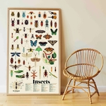 Poster géant + 44 stickers Insectes Poppik 2