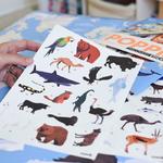 Poster géant + 67 stickers Animaux du monde Poppik 7