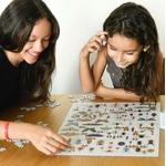 Puzzle Insectes 500 pièces Poppik 2