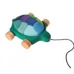 grimms-tortue-1