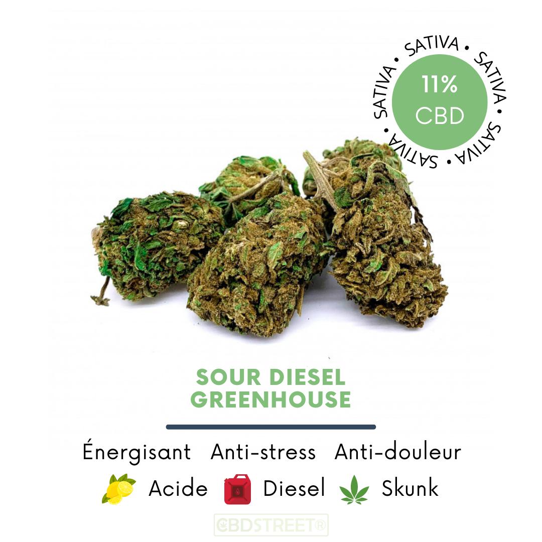 Sour Diesel CBD greenhouse 11%