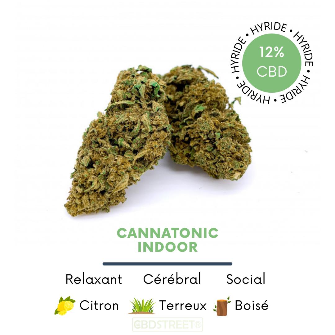 Cannatonic CBD Indoor 12%