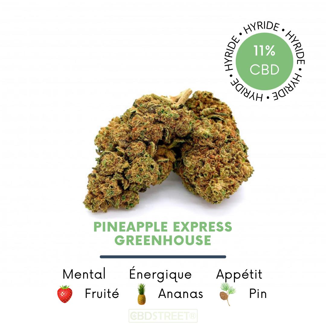 Pineapple Express CBD 11% greenhouse