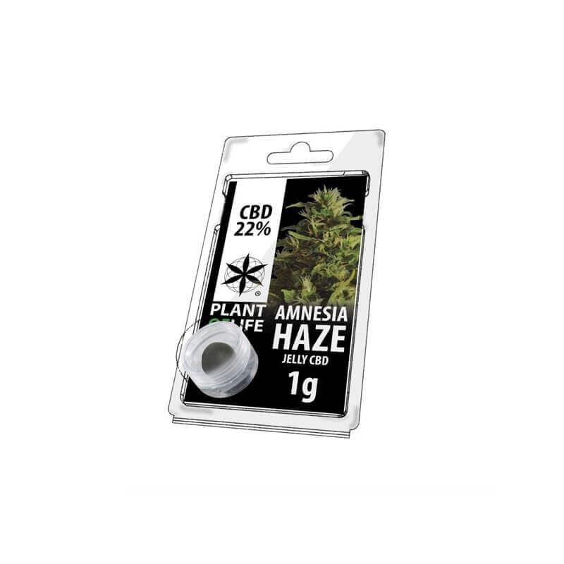Jelly Amnésia Haze 22% CBD 1g