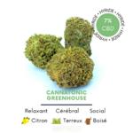 fleurs de CBD Cannatonic greenhouse