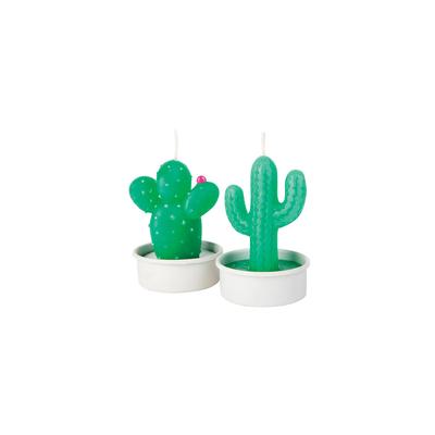 Lot de 6 bougies chauffe plat vert Cactus