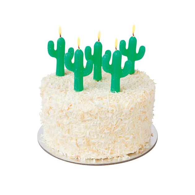bougie-anniversaire-originale-cactus-SUGCAKCC-2