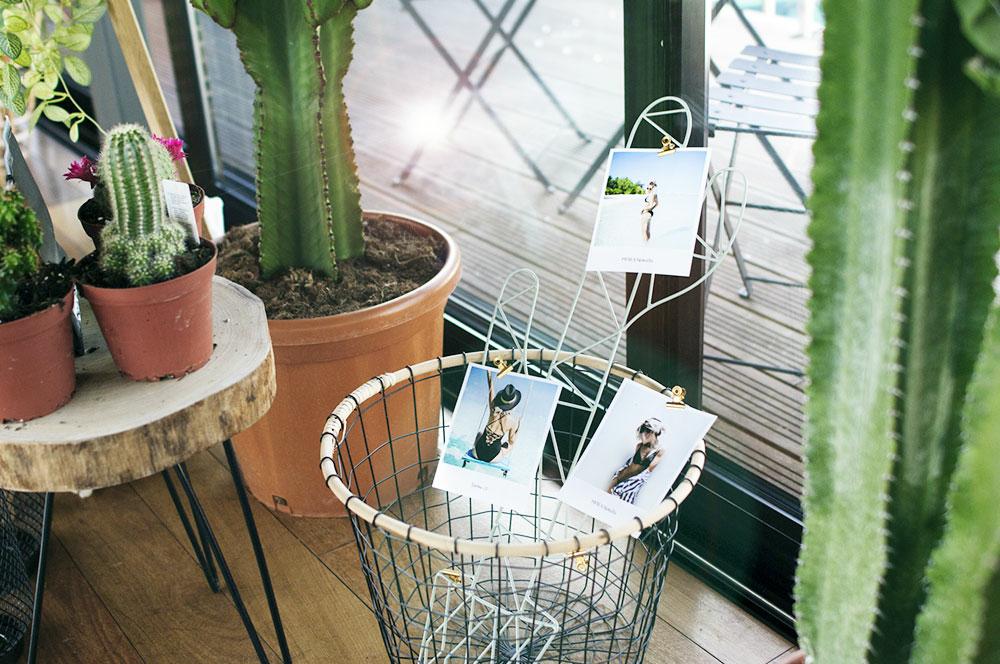 Décoration-Cactus-Panier-Conférence-Noholita