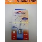 Ampoule classique halogène B22 53w=75w