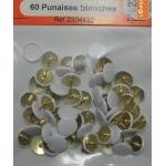 60 PUNAISES  BLANCHES