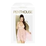 Boite de la nuisette transparente décorée de dentelle rose pâle Naughty Doll de la marque Penthouse - oohmygod
