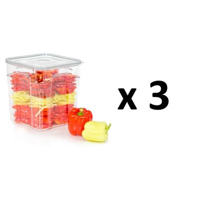 Lot de 3 boites sous vide Gastro Pro 8 litres