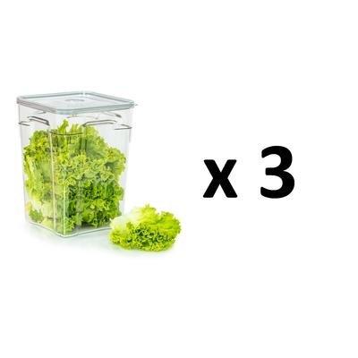 Lot de 3 boites sous vide Gastro Pro 10 litres