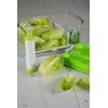 boite conservation salade