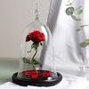 Saint-valentin-beaut-Rose-et-b-te-fleur-rouge-romantique-saint-valentin-cadeau-d-anniversaire-d