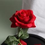 grande_rose_fleur_eternelle_rouge