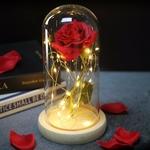 Rose_eternelle_sous_cloche_fleur