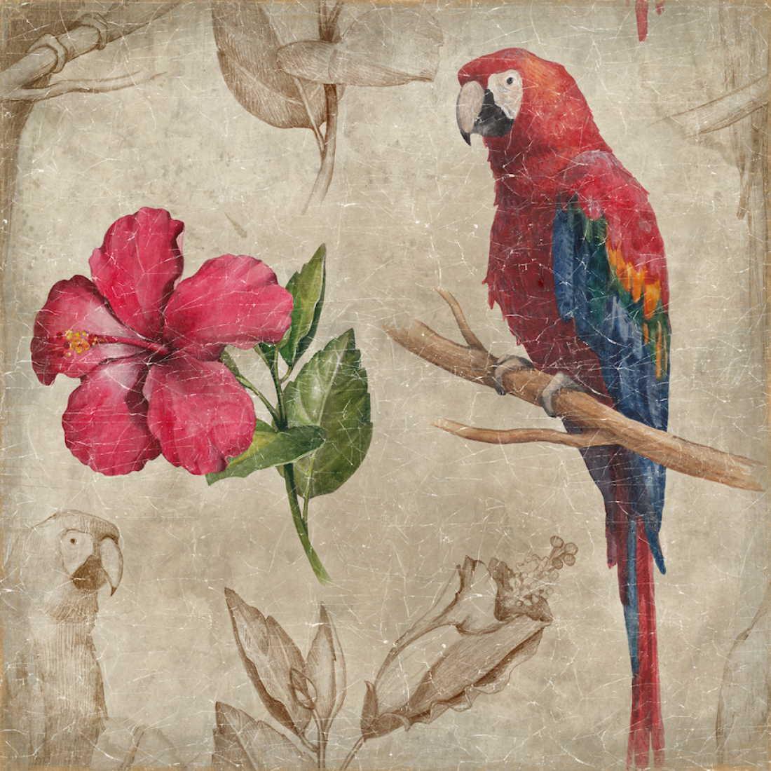 Tableau perroquet et hibiscus - papier froissé marouflé sur cadre bois