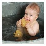 Petit Canard Alfie Junior - Jouet de bain Hevea