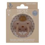 tetine-physiologique-fudge-couronne-hevea-planet-3-36-mois