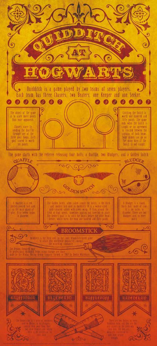Quidditch Art - Harry Potter : Quidditch Art Print Collector