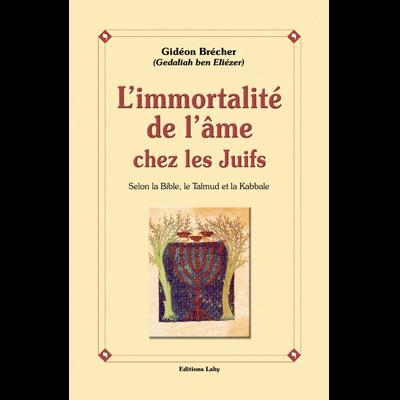 L\'Immortalité de l\'âme chez les juifs de Gidéon Brécher
