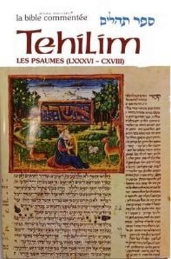 Tehilim / Psaumes Tome IV (LXXXVI - CXVIII de 86 à 118 ) avec une grande richesse de commentaires.
