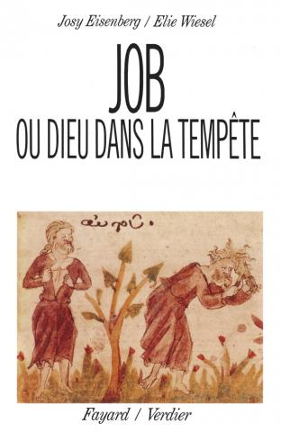 Job ou Dieu dans la tempête, d\'Elie Wiesel