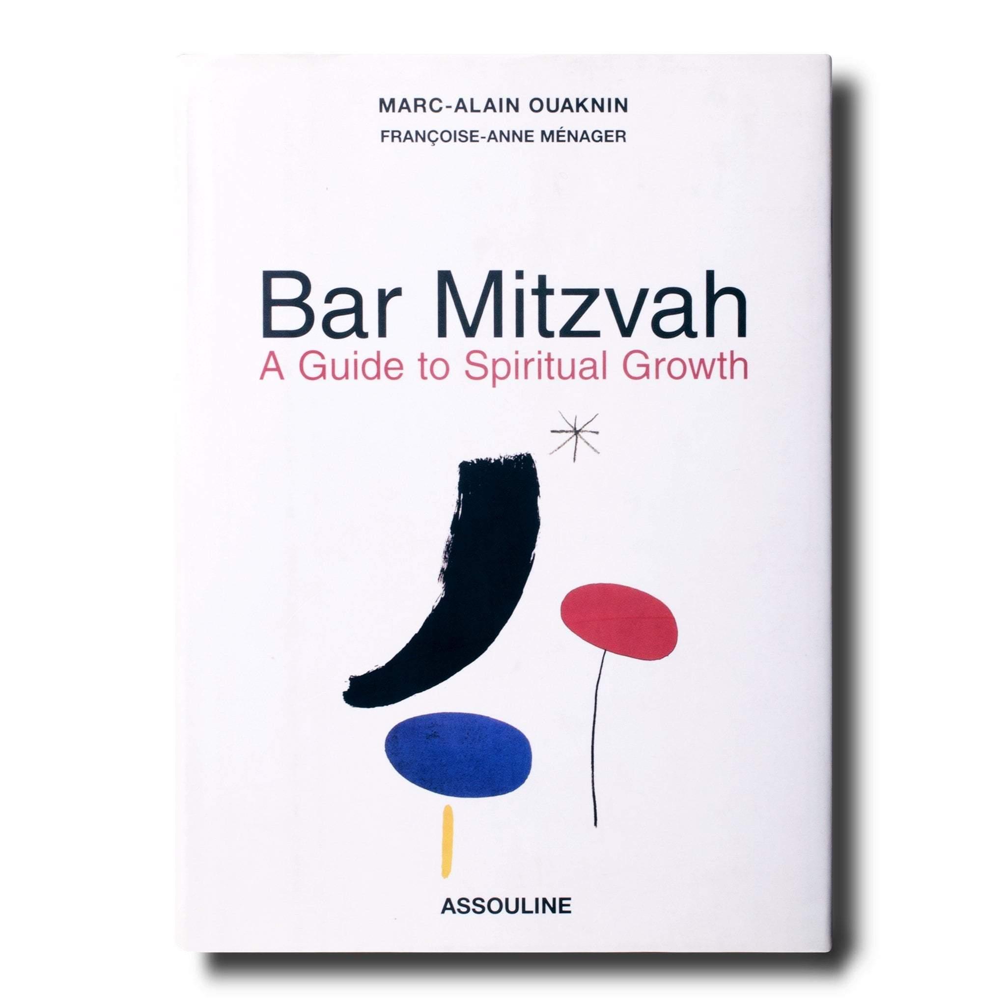 Bar Mitsva, un livre pour grandir