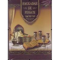Hagada hébreu/ Français et Phonétique illustrée avec couverture rigide.